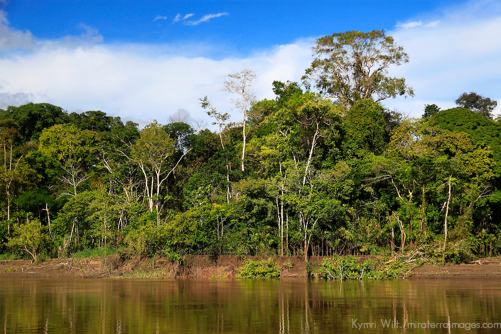 South America, Peru, Amazon. Peruvian Amazon.
