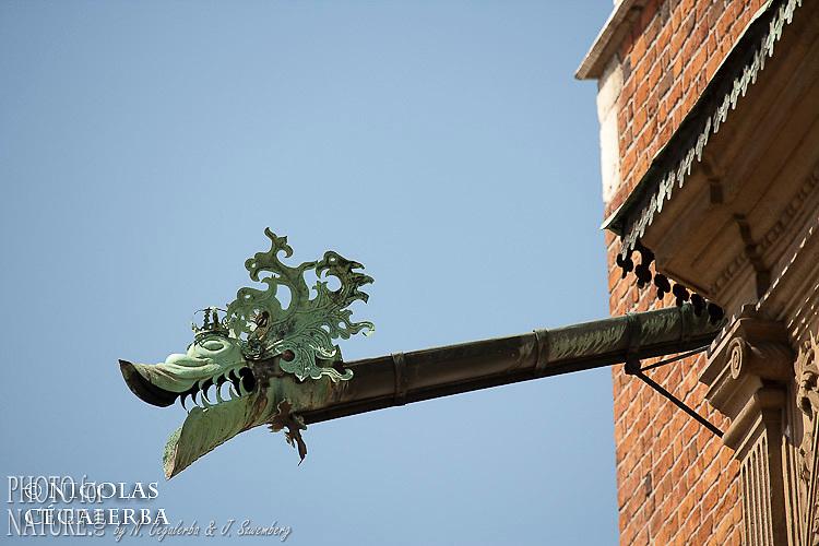 Gargouille en forme de Dragon, symbole de Cracovie, dans le Chateau du Wawel