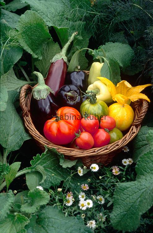 Mixed vegetable basket