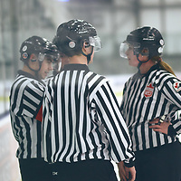 Referees during the Women's Hockey Home Game on Sat Feb 02 at The Co-operators Arena. Credit: Arthur Ward/Arthur Images