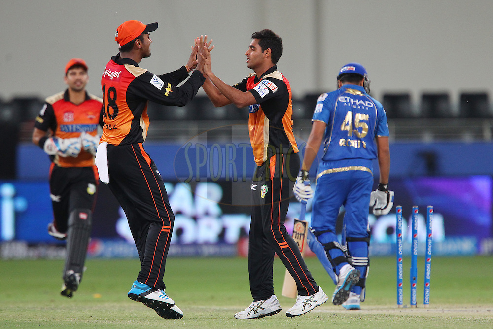 Bhuvneshwar Kumar of the Sunrisers Hyderabad celebrates the wicket of Rohit Sharma captain of of the Mumbai Indians with K.L Rahul of the Sunrisers Hyderabad during match 20 of the Pepsi Indian Premier League Season 2014 between the Mumbai Indians and the Sunrisers Hyderabad held at the Dubai International Stadium, Dubai, United Arab Emirates on the 30th April 2014<br /> <br /> Photo by Ron Gaunt / IPL / SPORTZPICS