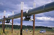 Trans Alaska Pipeline, Dalton Highway, Alaska, USA