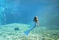 Mermaid Carli Dofka baths in the sunlight filtering down through the clear water at Weeki Wachee Springs near Tampa, Florida.