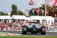 Jenson Button (GBR) McLaren MP4-29.<br /> Japanese Grand Prix, Saturday 4th October 2014. Suzuka, Japan.
