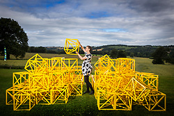 "© Licensed to London News Pictures. 14/07/2017. Wakefield UK. Kerry chase looks at the Zero to Infinity sculpture by Rasheed Araeen which is part of the new exhibition ""Occasional Geometries"" curated by Bangladeshi-born artist Rana Begum at the Yorkshire Sculpture park in Wakefield, the exhibition is largely selected from the Art's Council Collection & is designed to create an architectural, spatial & Playful experience through colour, movement & changing light.. The new exhibition is part of the Yorkshire Sculpture Parks 40th anniversary celebration ""A weekend of wonderful things"" Photo credit: Andrew McCaren/LNP"