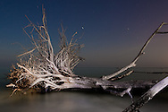 Night photographs of Beer Can Island with light painting.  Full moon rise behind camera right.