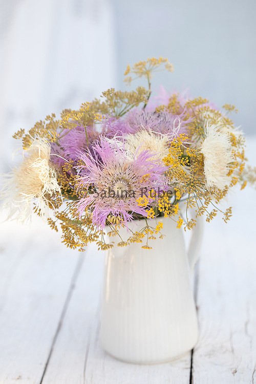 Flower arrangement with Centaurea americana 'Aloha Rosa' and C. 'Aloha Blanca' - basket flowers and Foeniculum vulgare 'Purpureum' - bronze fennel