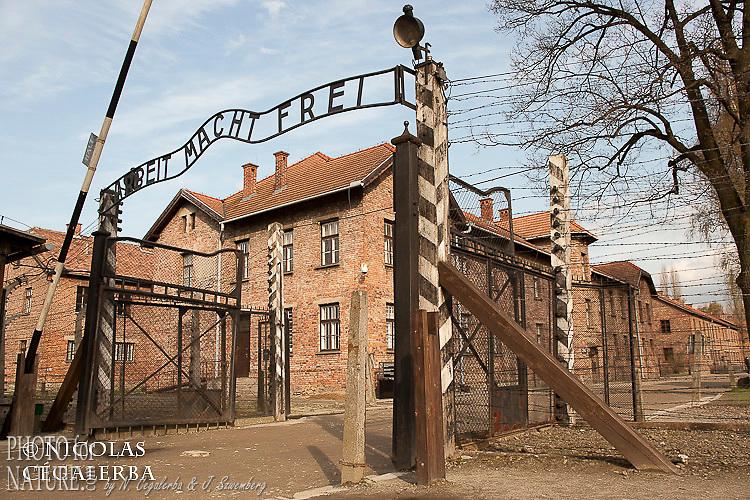 """Entrée du camp de concentration d'Auschwitz avec sa célèbre inscription """"le travail rend libre"""""""