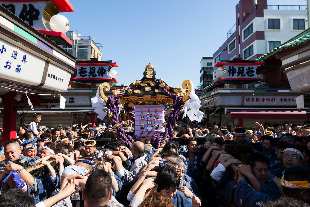 Tokyo, Asakusa - Le Sanja Matsuri est l'un des trois grands festivals de Tokyo, considéré comme le plus important. Le samedi, environ une centaine de mikoshi, sancturaires shinto portables, des divers sanctuaires des 44 quartiers d'Asakusa sont portés par leur membres jusqu'au célébre Senso-ji (sancturaire Kannon) pour être benni et purifié par un pretre shintoiste. Le dimanche, tous les membres se retrouvent dans ce même sanctuaire pour pourter les trois grands mikoshi du Senso-ji à travers les rue d'Asakusa. Ils traversent la porte Kaminarimon (le portail du Tonnere) et rejoignent les 44 quartiers d'Asakusa. [EN] The sanja matsuri is one of the greatest festival in Tokyo. Held on the third week end of june, in Asakusa Shrine known as Senso-ji. On saturday, about One hundred (100) mikoshi (portable sancturaies) from the different sanctuaries of 44 Asakusa 's district, gather at the Kaminarimon gate to enter in the Senso-ji to be purified and blessed by a Shinto priest. On sunday, The three great mikoshi are carried by the population true kaminarimon gate, to the shrine of the 44 districts of Asakusa. That three mikoshi represent the three men who create the Senso-ji.
