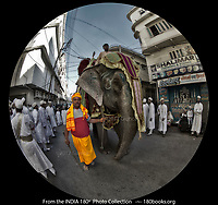 The Mahout at the parade to honor the 102nd Birth Anniversary of Syedna Muhammand Burhanuddin.