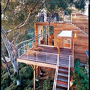 Sadie Rabines Architects, Montecito Way Treehouse, Treehouse, Mission Hills, San Diego, California, Residential Architecture, Residential Design, Interior Design, San Diego Home & Gardens Magazine, San Diego Magazine