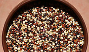 Organic rainbow quinoa, a mixture of quinoa seeds, provides complete protein through the necessary proportions of all nine essential amino acids.  The seeds, which originated in the Andes Mountains of South America, are related to spinach Swiss chard and beets