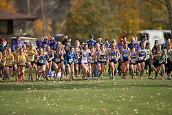 Amanda Truelove of the Western Mustangs runs in the women's  6K Dash at the 2013 CIS Cross Country Championships in London Ontario, Saturday,  November 9, 2013.<br /> Mundo Sport Images/ Geoff Robins