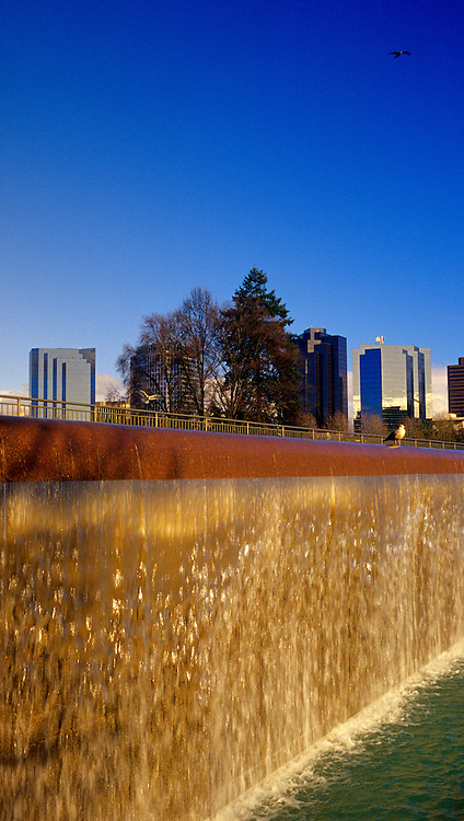 Image of the Downtown Park and skyline in Bellevue, Washington, Pacific Northwest