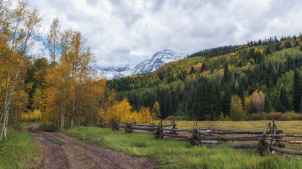 A winding road leading into the Colorado wilderness.