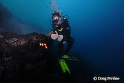 """diver Bud Turpin shapes erupting pillow lava by hand to form underwater lava sculptures at Kilauea Volcano, Hawaii Island ("""" the Big Island """"), Hawaii, U.S.A. ( Central Pacific Ocean ) MR 348"""