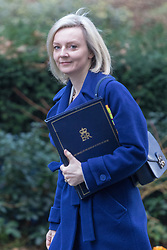 Downing Street, London, January 17th 2017. Justice Secretary and Lord Chancellor Liz Truss arrives at the weekly cabinet meeting at 10 Downing Street.