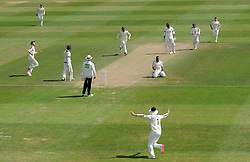 Nottinghamshire's Samit Patel celebrates the wicket of Somerset's Marcus Trescothick - Photo mandatory by-line: Harry Trump/JMP - Mobile: 07966 386802 - 16/06/15 - SPORT - CRICKET - LVCC County Championship - Division One - Day Three - Somerset v Nottinghamshire - The County Ground, Taunton, England.