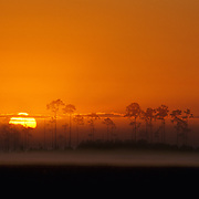 Glorious sunrise in Everglades National Park, FL.
