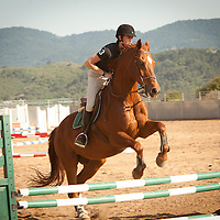 English Horse Riding and Horse Jumping