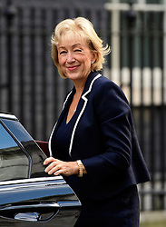 © Licensed to London News Pictures. 13/09/2016. London, UK.  Secretary of State for Environment, Food and Rural Affairs ANDREA LEADSOM MP, arrives at 10 Downing Street in London for cabinet meeting on September 13, 2016. Photo credit: Ben Cawthra/LNP