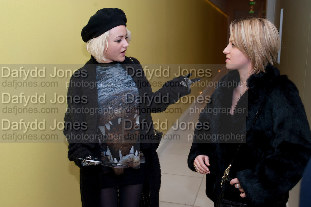 JAMIE WINSTONE; RUTH CARNAC,  English National Ballet launches its Christmas season with a partyu before s performance of The Nutcracker at the Coliseum.  St. Martin's Lane Hotel.  London. 16 December 2009 *** Local Caption *** -DO NOT ARCHIVE-© Copyright Photograph by Dafydd Jones. 248 Clapham Rd. London SW9 0PZ. Tel 0207 820 0771. www.dafjones.com.<br /> JAMIE WINSTONE; RUTH CARNAC,  English National Ballet launches its Christmas season with a partyu before s performance of The Nutcracker at the Coliseum.  St. Martin's Lane Hotel.  London. 16 December 2009