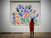 "The Sheaf and Acanthus. Tate Modern's new exhibition, Henri Matisse: The Cut-Outs, is devoted to the artist's paper cut-outs made between 1943 and 1954. It brings together around 120 works, many seen together for the first time, in a ""groundbreaking"" reassessment of Matisse's colourful and innovative final works. The exhibition opens at Tate Modern on 17 April 2014. They were collected together in Jazz 1947 (Pompidou, Paris), a book of 20 plates. And this will be the first time that the maquettes and the book have been shown together outside of France. Other major cut-outs in the exhibition include Tate's The Snail 1953, its sister work Memory of Oceania 1953 and Large Composition with Masks 1953. The show also includes the largest number of Matisse's Blue Nudes ever exhibited together, including the most significant of the group Blue Nude I 1952. Tate Britain, London, UK."