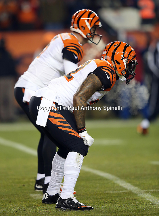 Cincinnati Bengals running back Jeremy Hill (32) and Cincinnati Bengals quarterback AJ McCarron (5) exhale steam on a cold night game during the 2015 NFL week 16 regular season football game against the Denver Broncos on Monday, Dec. 28, 2015 in Denver. The Broncos won the game in overtime 20-17. (©Paul Anthony Spinelli)