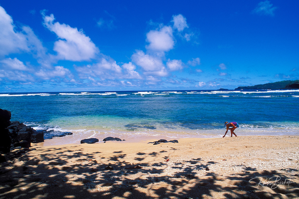 Girl collecting shells on beach (Kilauea Lighthouse and Kalihiwai Bay in background), North Shore, Kauai, Hawaii