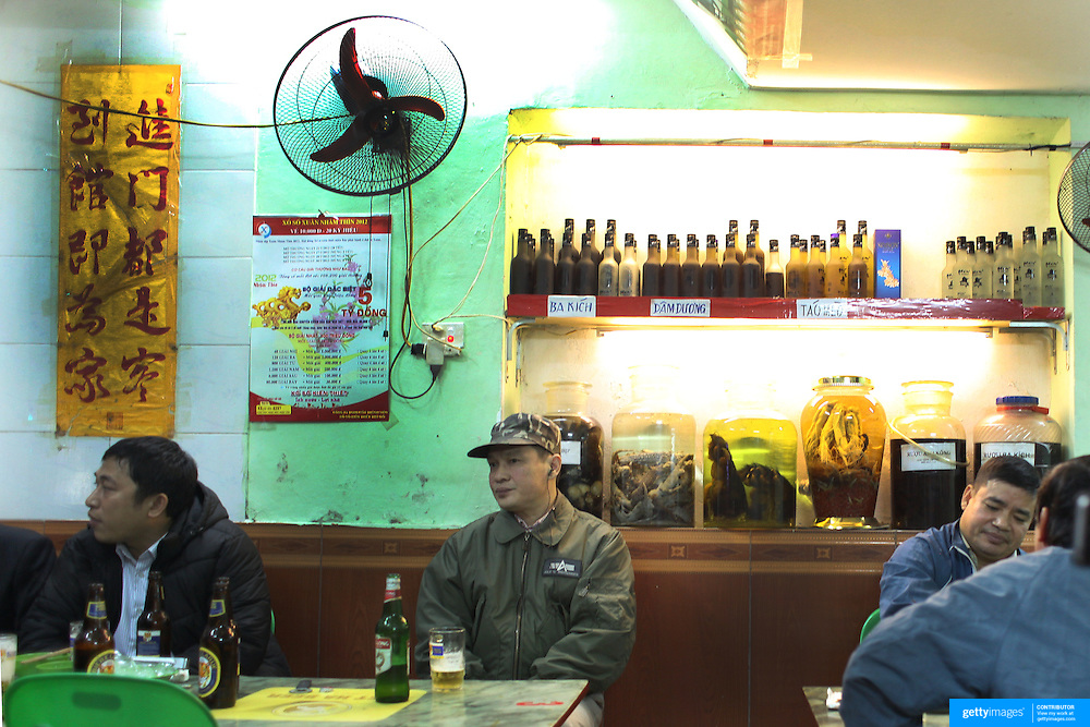 Locals drink beer in a bar on a street corner in the old quarter of Hanoi, Vietnam. Sitting behind the patrons are various vodka drinks including 'bear claw' vodka using the claws of a bear. The drink is said to help mens Virility. Hanoi, Vietnam. 17th March 2012. Photo Tim Clayton