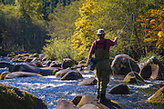 Fly fishing on the North Fork of the Middle Fork of the Willamette River; Willamette National Forest, Cascade Mountains, Oregon.