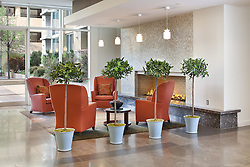 Condominium Modern lobby with topiary