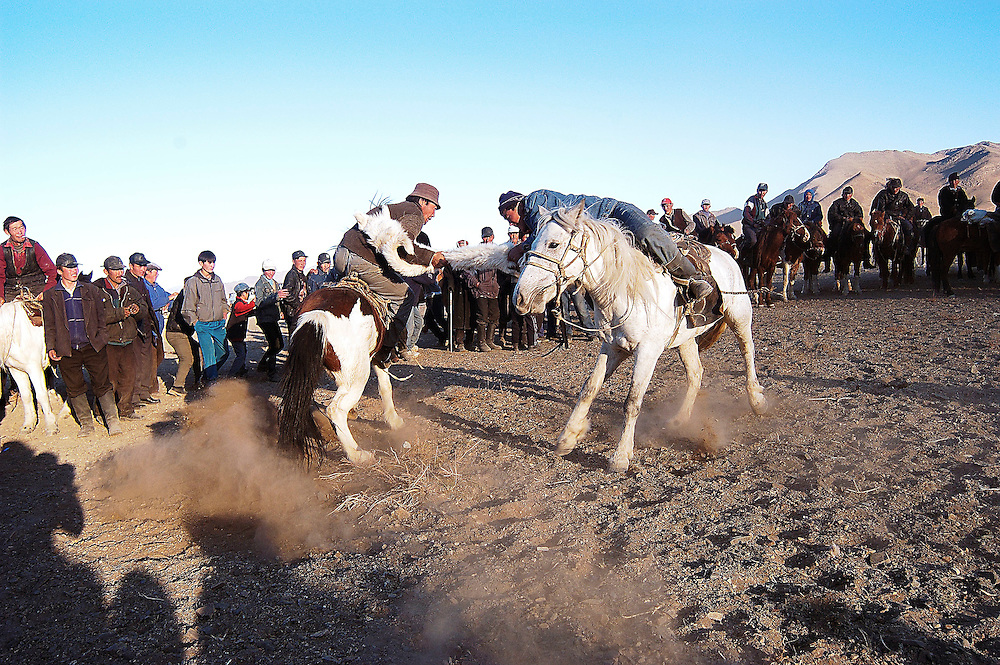 Two Kazakh riders struggle for control of a dead goat in a game of Kokpar also known as Bushkashi at the annual Eagle Hunting Festival, Bayan Olgi, Mongolia, Oct 6, 2003.  Kokpar requires a combination of strength, courage, and horsemanship skills.  This traditional game has come back since the Soviet withdrawal from the region.  The Kazakhs of Mongolia play one on one, with 10 men on each team.  When a rider loses his grip on the goat or falls off his horse he has to join the opposing team.  Eventually one team has all the riders on its side and is the winner.  Kokpar or Bushkashi is also played in a ruby style in other parts of Central Asia including Kazakhstan.  Hundreds of riders may line up on each side, and then mayhem prevails as they all rush to grab the goat.