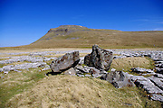 Ingleborough mountain (one of the 'Three Peaks'), from the limestone pavement of White Scars, with glacial erratic boulders of greywacke (Millstone grit) in the foreground.<br />