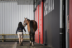 Algotsson Linda, Fairnet<br /> Departure of the horses to the Rio Olympics from Liege Airport - Liege 2016<br /> © Hippo Foto - Dirk Caremans<br /> 30/07/16