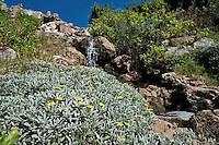 Salento Litoranea Ionica.Veduta costa, località Ciardo-Felloniche, tra Santa Maria di Leuca e San Gregorio in provincia di Lecce