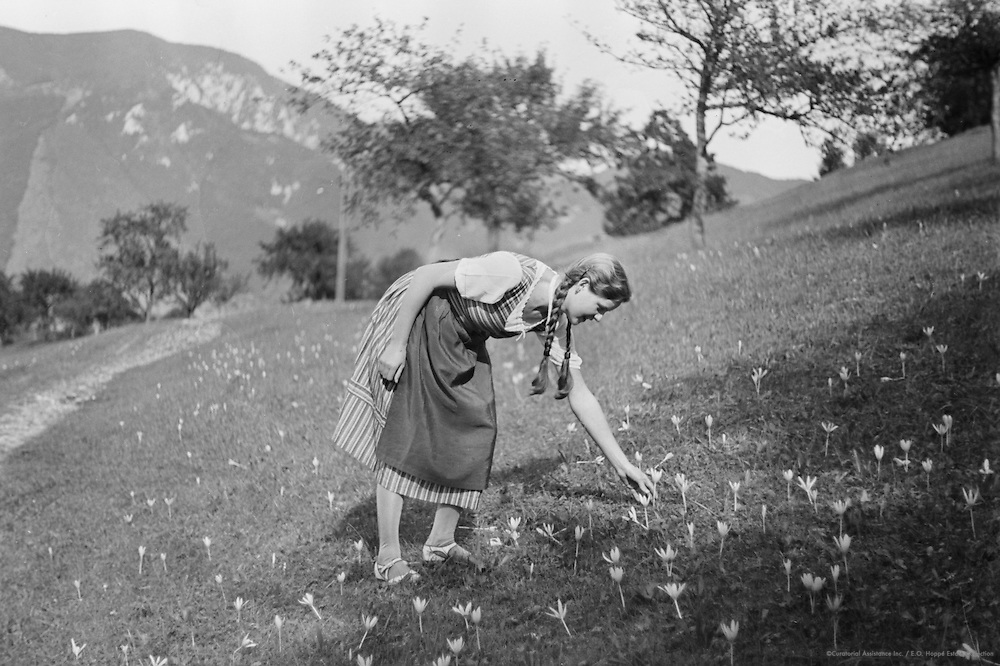 Girl Picking Flowers, Molln, Austria, 1935