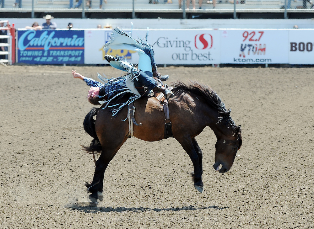 Biscuit gives Kyle Brennecke from Grain Valley, MO a run for his money during Sunday's Day of Champions bareback finale at the California Rodeo Salinas.