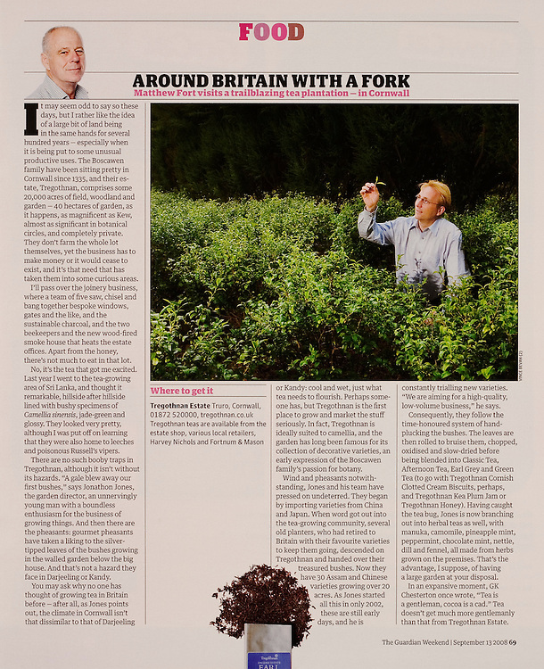 Tregothnan Tea Farm, Cornwall, commissioned by THE GUARDIAN WEEKEND MAGAZINE.