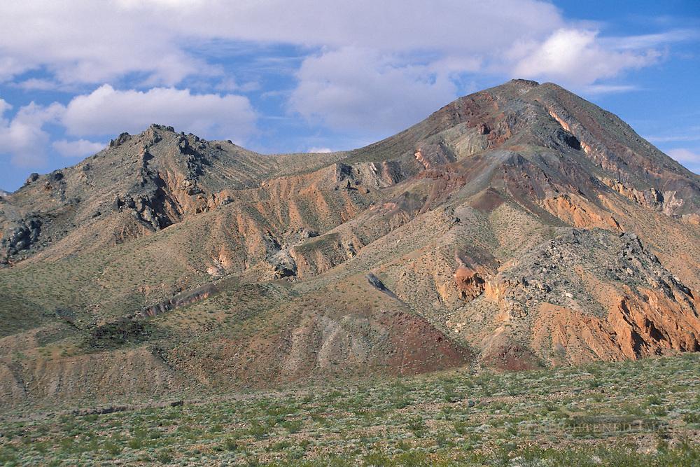 Green bushes in spring in desert below eroded hills, near Pinto Peak, Death Valley National Park, California