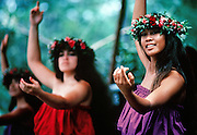 Hula dancer, Hawaii