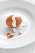 Hard boiled egg in shell