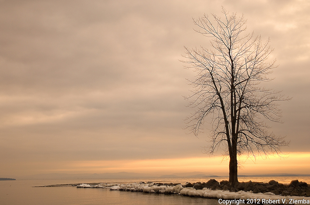 """Dawn at Ausable Point 2""-An image of a tree on the point at Ausable Point State Park, Lake Champlain, New York."
