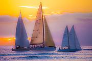 Sailboats at sunset off Dana Point