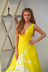 February 24, 2019 - Los Angeles, California, U.S - MARIA MENOUNOS during red carpet arrivals for the 91st Academy Awards, presented by the Academy of Motion Picture Arts and Sciences (AMPAS), at the Dolby Theatre in Hollywood. (Credit Image: © Kevin Sullivan via ZUMA Wire)