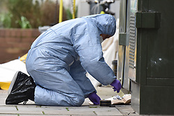 © Licensed to London News Pictures. 08/03/2019. Fulham, London, UK. Forensic officer with evidence bag during a sweep of Lanfrey Place where 17yr old Ayub Hassan died of stab wounds sustained in an attack yesterday afternoon. Four teenagers have been arrested in connection with the murder, the investigation continues. Photo credit: Guilhem Baker/LNP