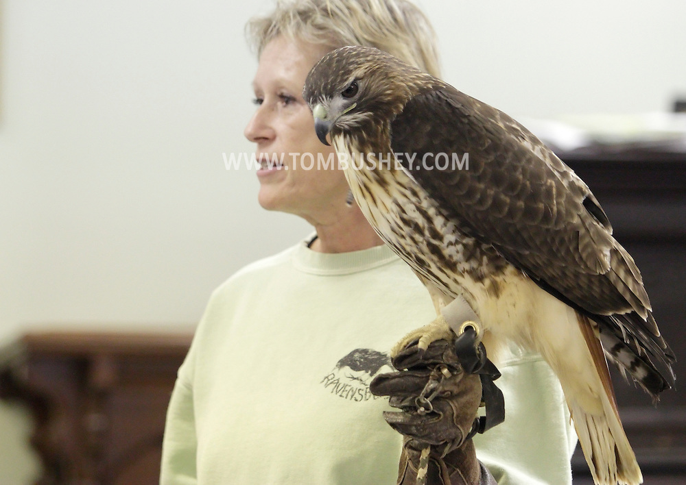 Wurtsboro, New York  - Ellen Kalish of the Ravensbeard Wildlife Rehabilitation Center holds a red-tailed hawk (Buteo jamaicensis) during a live bird demonstration at the Wurtsboro Winterfest on Feb. 11, 2012. The program was presented by the Basha Kill Area Association.. ©Tom Bushey / The Image Works