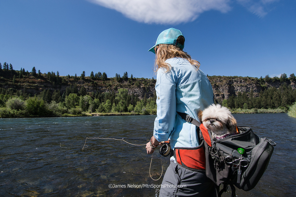 Alexis Metcalf fly fishes for trout with her teacup shima, Hershey, on the South Fork of the Snake River, Idaho.