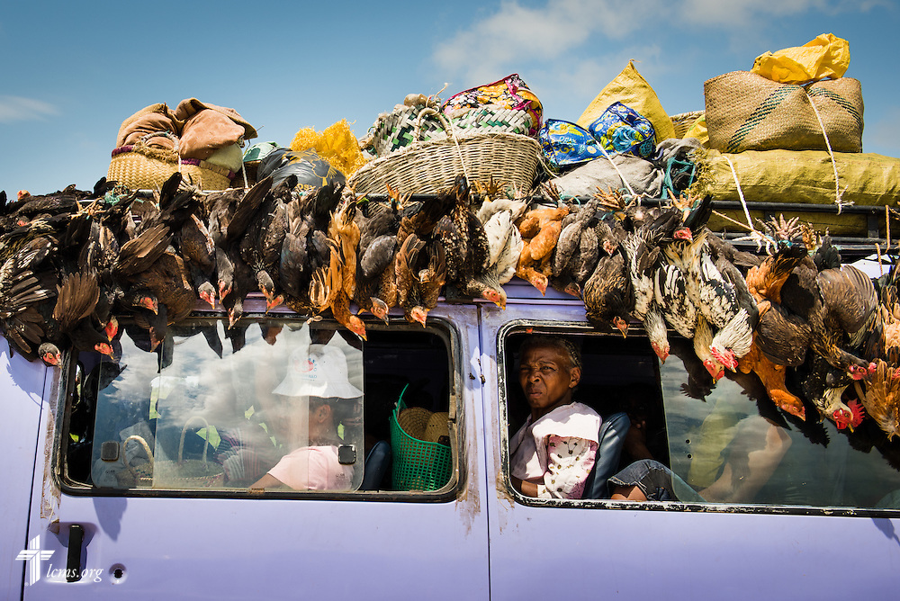Roosters hang from a van heading Eastward to Taolagnaro in Madagascar, Thursday, Oct. 23, 2014. LCMS Communications/Erik M. Lunsford