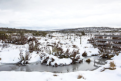 Snow near the turnoff toward Little Pine Lagoon in Tasmania's Central Highlands